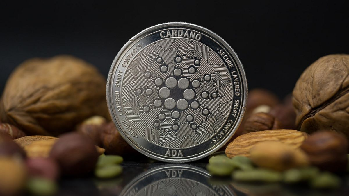 Information about Cardaon cryptocurrency